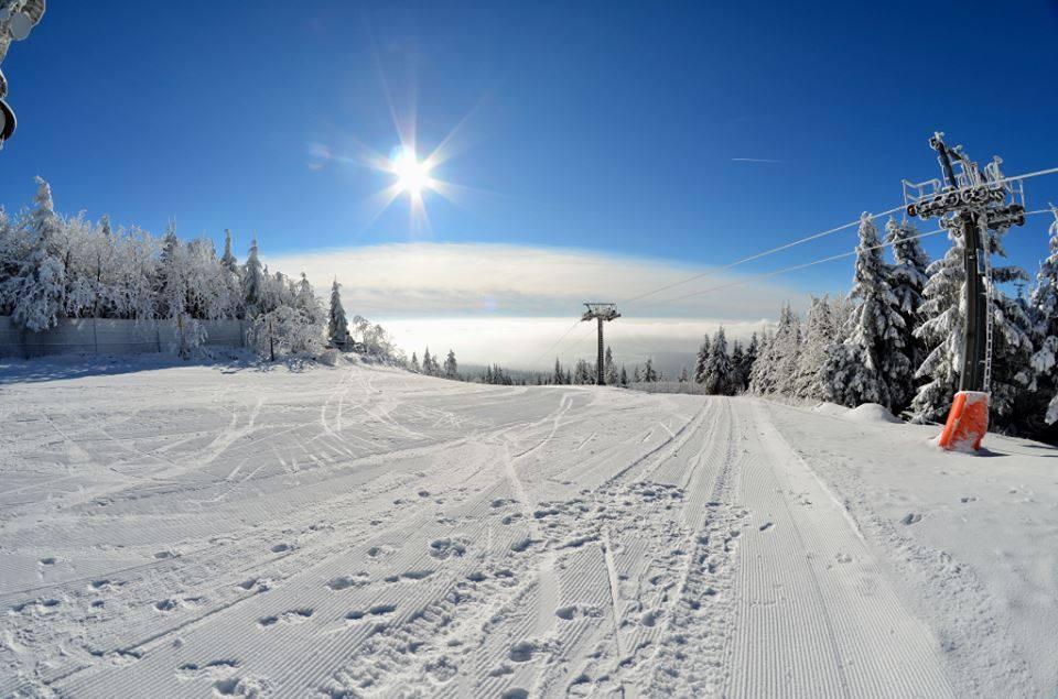 winter oko